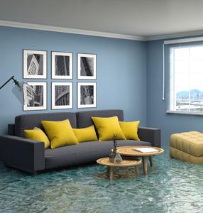 Flooded living room that Protek Restoration can help clean up