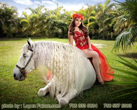 Horses Quince Photography Miami Video Quinceanera With