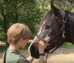 Colby's Army photo of a young teen connecting with a bay horse