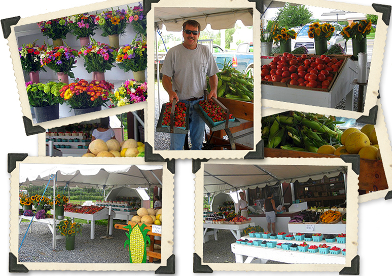 A collage of photos of Hank's Farmstand showing fruits, vegetables and flowers on tables under their farmstand tent.