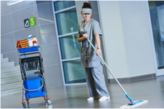 GOVERNMENT BUILDING CLEANING SERVICES FROM MGM Household Services