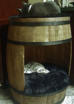Whiskey Barrel Cat Beds