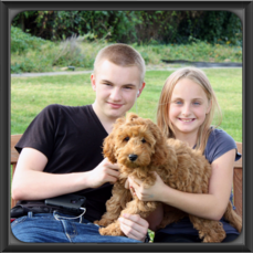 Red labradoodle Puppy with boy and girl