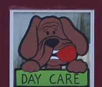 Dog Daycare Doggy Day Care Doggie