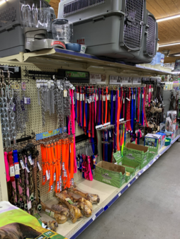 Dog collars in every size and color imaged are available. We have devoted an entire aisle to collars for your dog.
