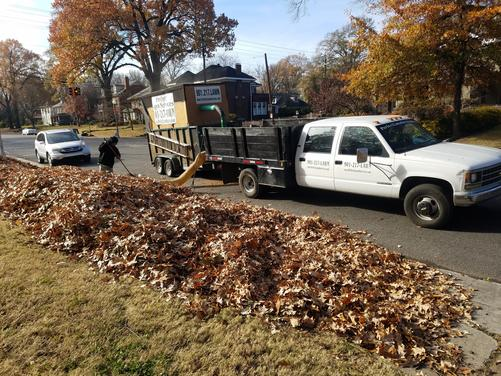 Leaf Removal Germantown TN