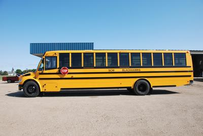 American Lion Bus