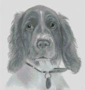 Cross Stitch Chart of a Springer Spaniel original artwork by Nick Clark