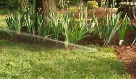 Professional Irrigation System Installation for watering sod and shrubs