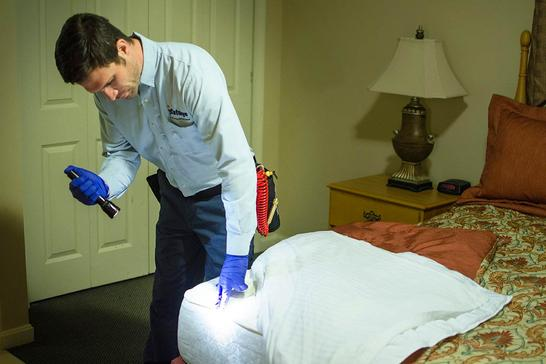 BED BUG PREP CLEANING SERVICE FROM MGM Household Services