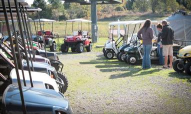 Rental Cart line up, showcase, Hot Rod Golf Cart