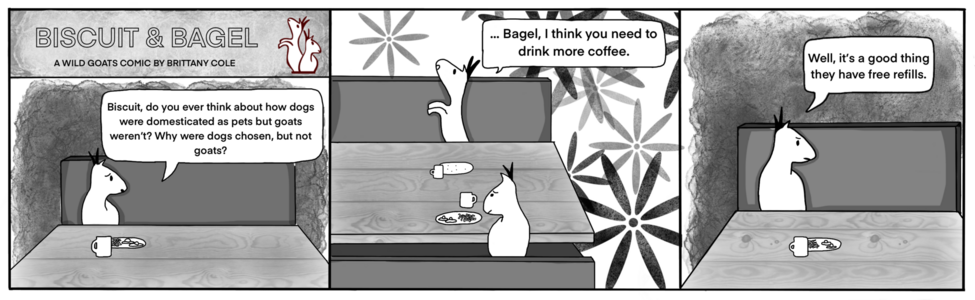 Biscuit and Bagel comic strip