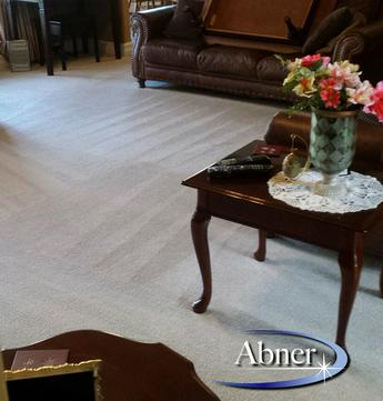 A photo of the best carpet cleaning in Halifax
