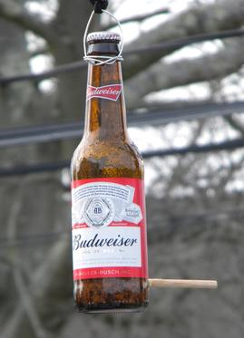 Drill a hole in glass bottle budweiser bird feeder