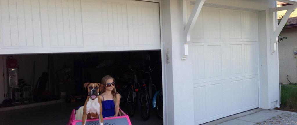 Garage Door Repair And Service Company America S Garage
