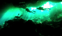 cavern cave cenote diving snorkeling cancun