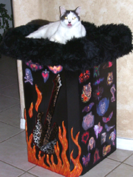 Rock Star Themed Cat Condo