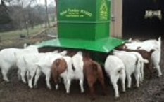 Solar Feeders Automatic Feeder