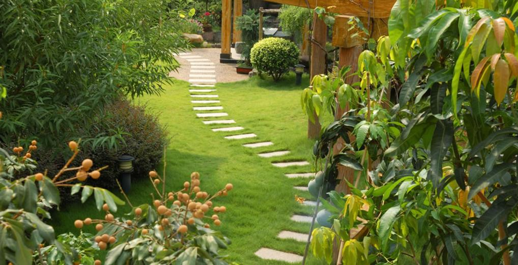 Leading Gardener Services and Cost Edinburg McAllen Texas| RGV Household Services