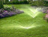 Sprinkler Systems by Wild Earth Gardens