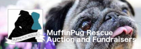 MuffinPug Rescue Auction and Fundraisers