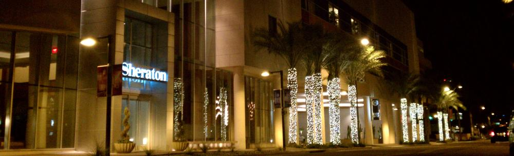 contact us about our christmas light holiday helpers az