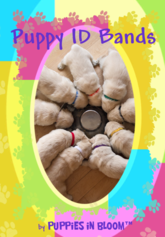 Puppy ID Bands
