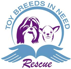 Toy Breeds In Need Rescue