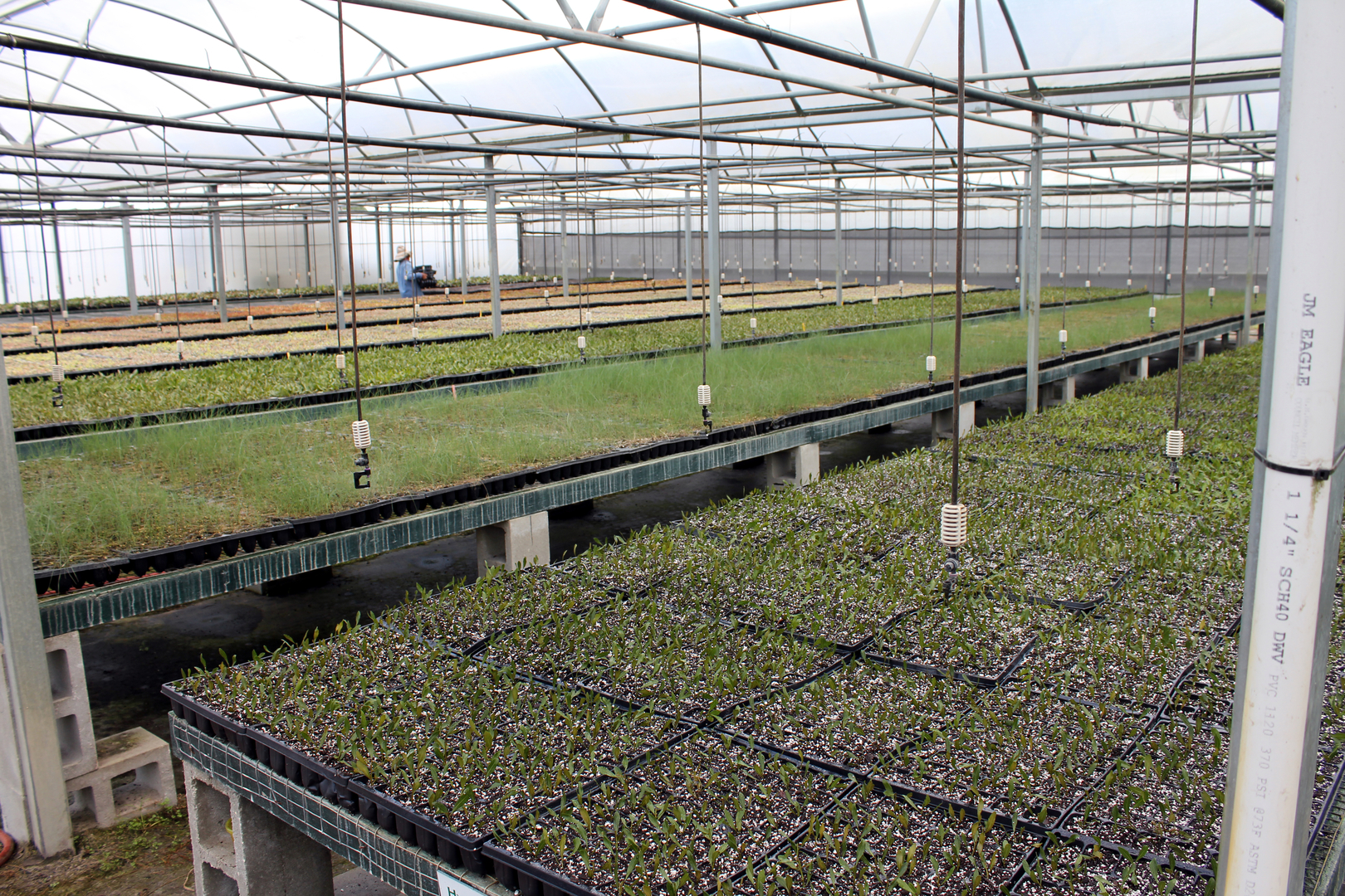 The greenhouse dallas tx - The Greenhouse Dallas Tx 36