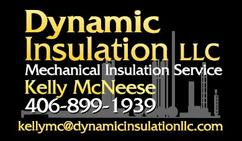 Dynamic Insulation LLC Logo and Business Cards