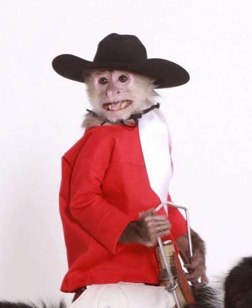Whiplash The Cowboy Monkey Dinosaur Roundup Rodeo