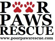 Poor Paws Rescue North