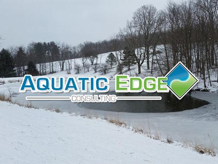 Aquatic Edge Consulting