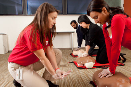 Nation S Best Cpr Red Cross Cpr Cpr Training First Aid Classes
