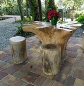 Tree Root Raw Edge Furniture