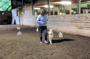 Kathleen and Hjalmar doing Rally Obedience
