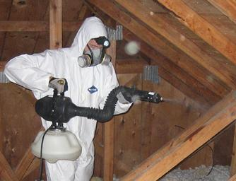 Centurian Wildlife Services Teammate Spraying sanitizing spray in attic