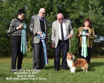 International Canine Kennel Club