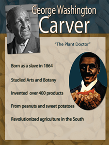 a biography of george washington carver born a slave in diamond grove missouri George washington carver born: july 12, 1864, in diamond grove, missouri (though birth date may be uncertain)  born a slave around 1860, he lost his mother to.