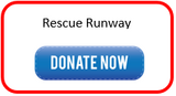 Rescue Runway Donation Page