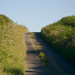 A country lane in Newcastle on Clun