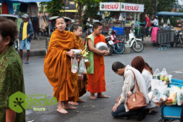 Alms giving to monks tour Chiang Mai