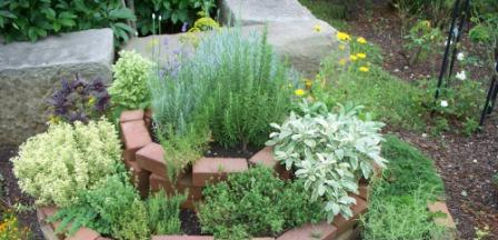 Even a beginner can learn how to garden in style. Add a spiral herb garden for a decorative touch to your garden or landscaping.