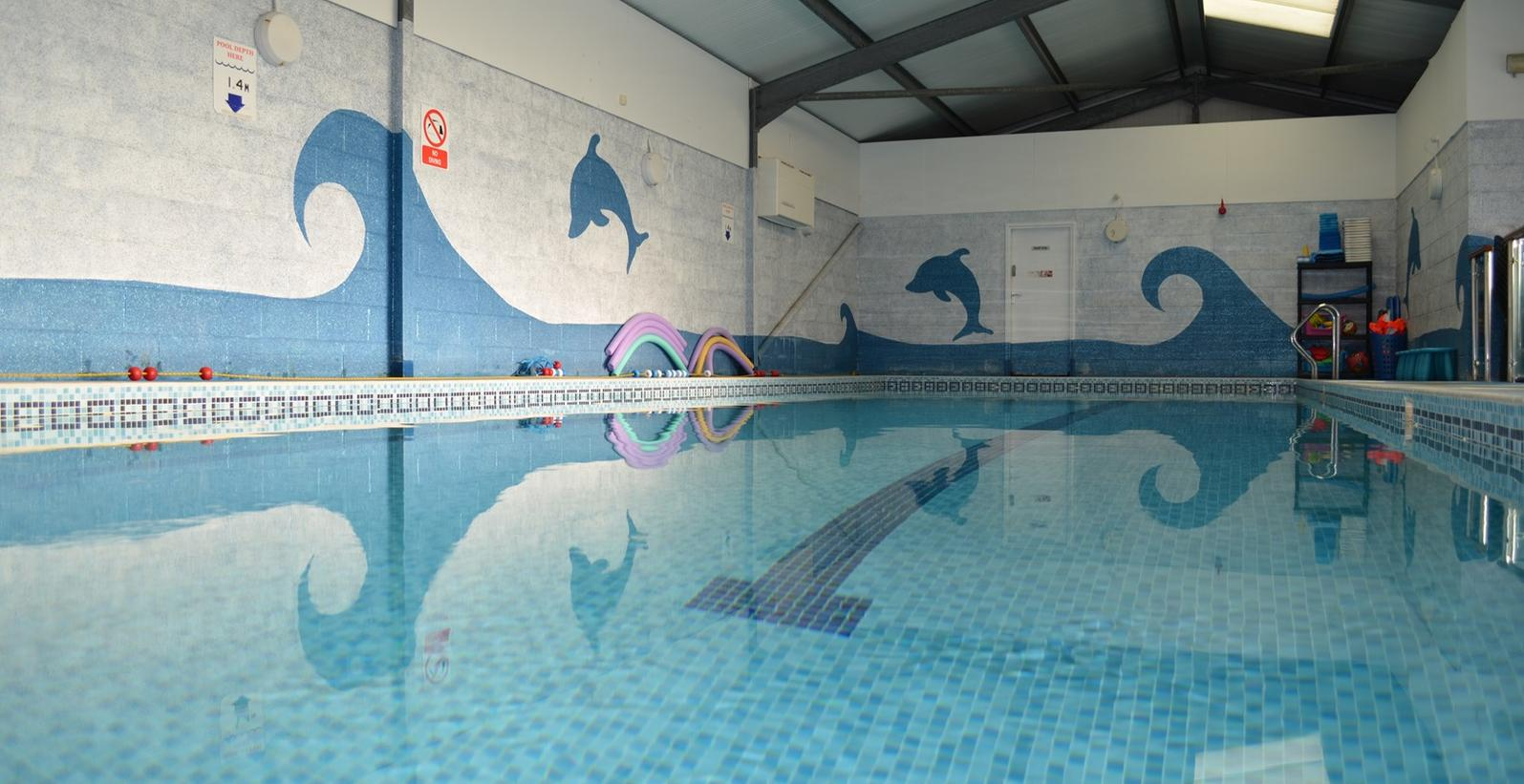 Big fish little fish swim school 01253 856318 in thornton for Little fish swim school