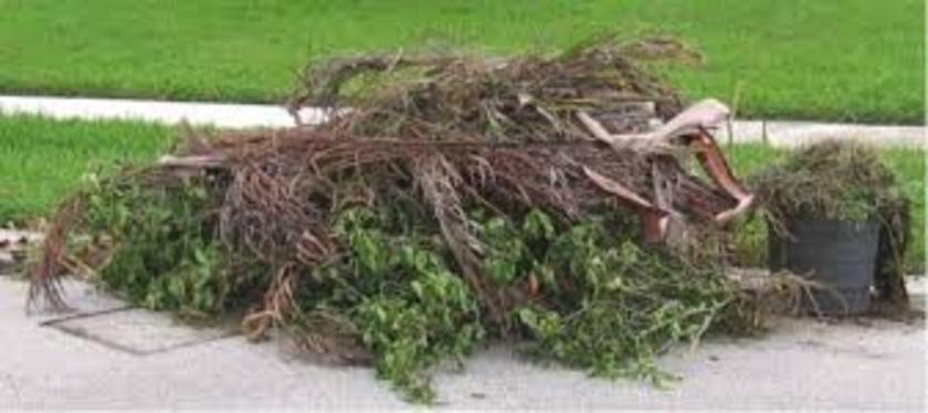 YARD WASTE REMOVAL SERVICES