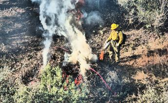 Prescott, Arizona Tree Removal Defensible Space Arrow Fire