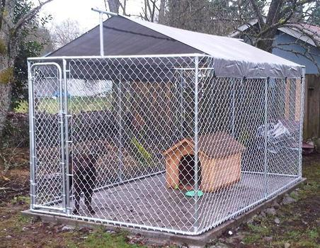 Diy dog kennel roof ideas for Ready dog kennel