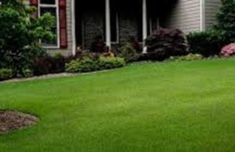 Lakeside Lawn Care-lawn work sample from Sanford NC