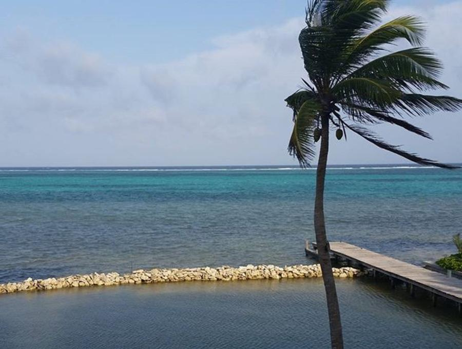 Lesons in belize will show you where to stay in belize, where to eat in belize, and what to do in belize