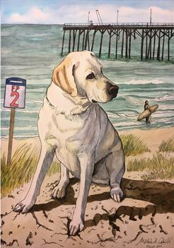 White Lab, Beach dog